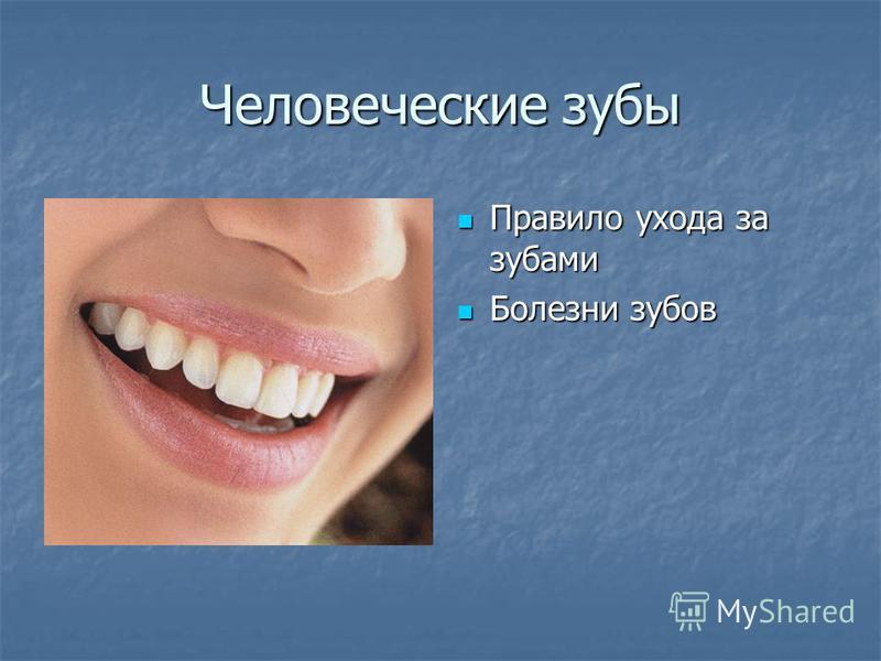 Человеческие зубы Правило ухода за зубами Правило ухода за зубами Болезни зубов Болезни зубов