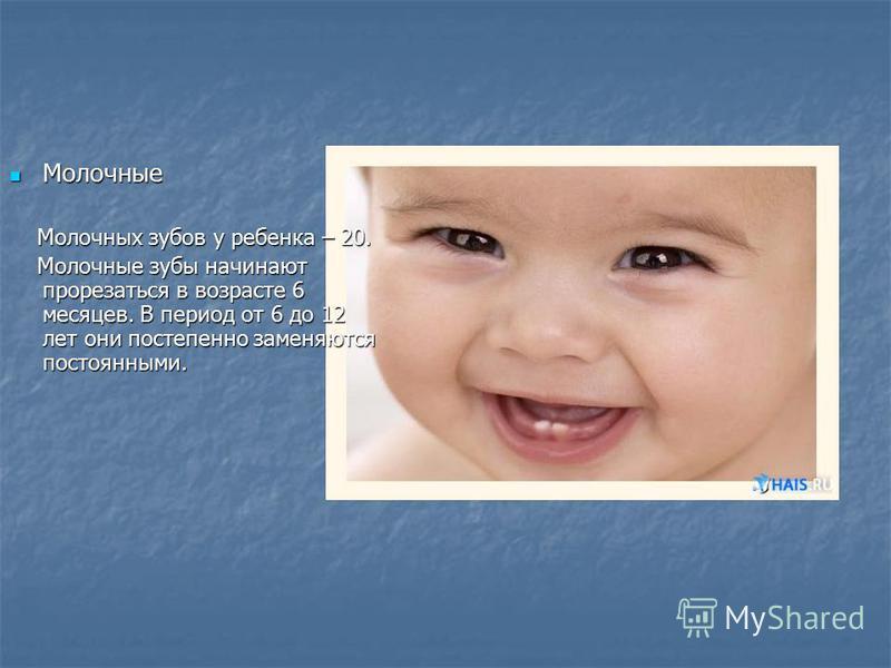 Молочные Молочные Молочных зубов у ребенка – 20. Молочных зубов у ребенка – 20. Молочные зубы начинают прорезаться в возрасте 6 месяцев. В период от 6 до 12 лет они постепенно заменяются постоянными. Молочные зубы начинают прорезаться в возрасте 6 ме