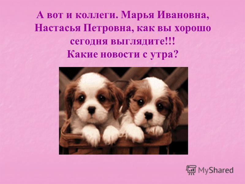 А вот и коллеги. Марья Ивановна, Настасья Петровна, как вы хорошо сегодня выглядите!!! Какие новости с утра?