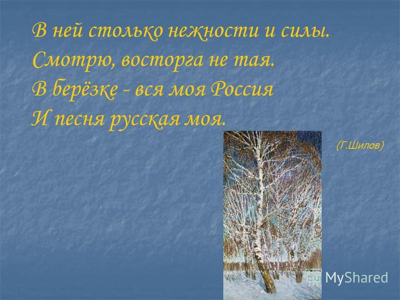 В ней столько нежности и силы. Смотрю, восторга не тая. В берёзке - вся моя Россия И песня русская моя. (Г.Шилов)