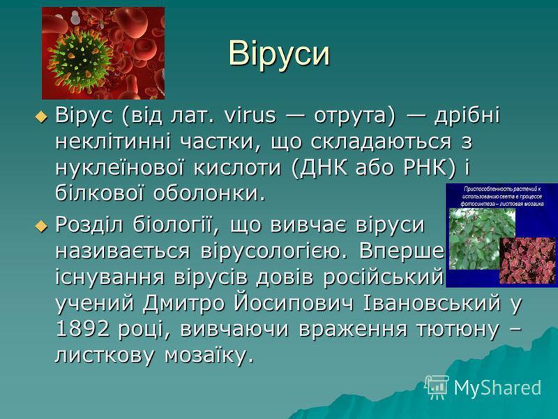 Віруси Вірус (від лат. virus отрута) дрібні неклітинні частки, що складаються з нуклеїнової кислоти (ДНК або РНК) і білкової оболонки. Вірус (від лат. virus отрута) дрібні неклітинні частки, що складаються з нуклеїнової кислоти (ДНК або РНК) і білков