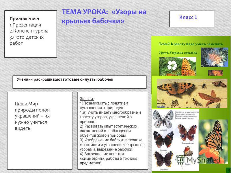 ТЕМА УРОКА: «Узоры на крыльях бабочки» Задачи: 1)Познакомить с понятием «украшения в природе». 1,а) Учить видеть многообразие и красоту узоров, украшений в природе. 2) Развивать опыт эстетических впечатлений от наблюдения объектов живой природы. 3) И