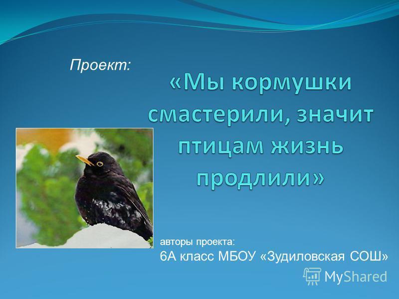 авторы проекта: 6А класс МБОУ «Зудиловская СОШ» Проект: