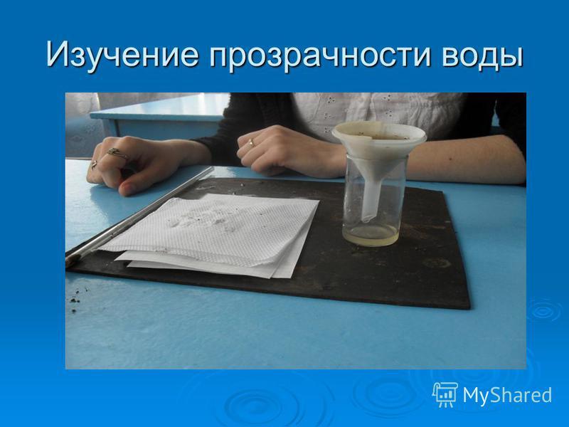Изучение прозрачности воды