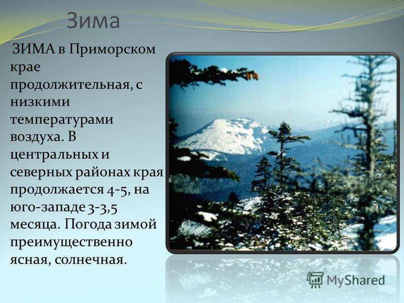 Зима ЗИМА в Приморском крае продолжительная, с низкими температурами воздуха. В центральных и северных районах края продолжается 4-5, на юго-западе 3-3,5 месяца. Погода зимой преимущественно ясная, солнечная.