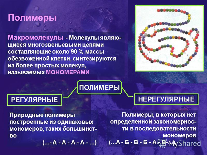 Полимеры Макромолекулы - Молекулы являющиеся многозвеньевыми цепями составляющие около 90 % массы обезвоженной клетки, синтезируются из более простых молекул, называемых МОНОМЕРАМИ ПОЛИМЕРЫ РЕГУЛЯРНЫЕ НЕРЕГУЛЯРНЫЕ Природные полимеры построенные из од