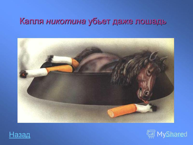 Капля никотина убьет даже лошадь Далее Назад