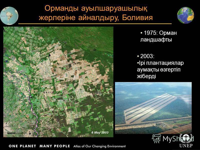 Орманды ауылшаруашылық жерлеріне айналдыру, Боливия 1975: Орман ландшафты 2003: Ірі плантациялар аумақты өзгертіп жіберді