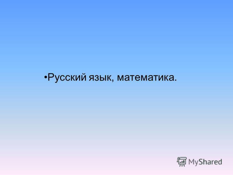 Русский язык, математика.