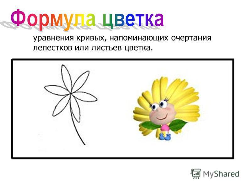 уравнения кривых, напоминающих очертания лепестков или листьев цветка.