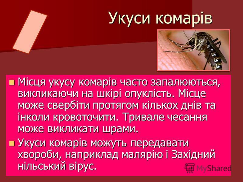 Місця укусу комарів часто запалюються, викликаючи на шкірі опуклість. Місце може свербіти протягом кількох днів та інколи кровоточити. Тривале чесання може викликати шрами. Місця укусу комарів часто запалюються, викликаючи на шкірі опуклість. Місце м