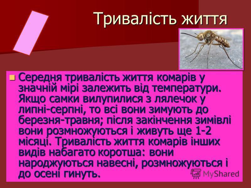 Середня тривалість життя комарів у значній мірі залежить від температури. Якщо самки вилупилися з лялечок у липні-серпні, то всі вони зимують до березня-травня; після закінчення зимівлі вони розмножуються і живуть ще 1-2 місяці. Тривалість життя кома