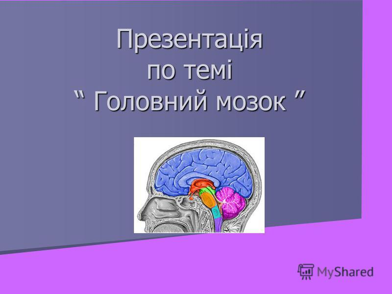 Презентація по темі Головний мозок Презентація по темі Головний мозок