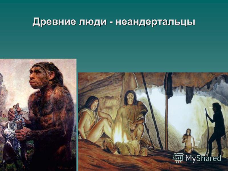 Древние люди - неандертальцы