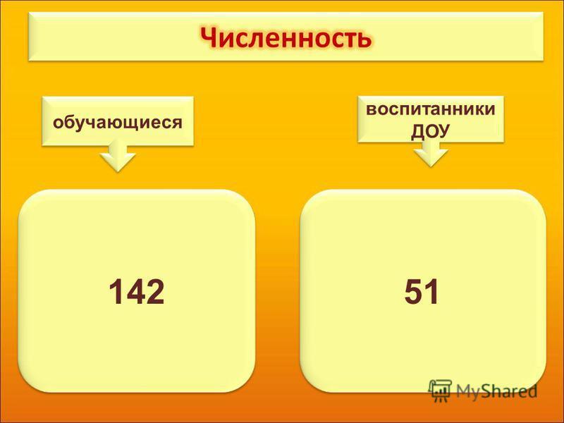14251 обучающиеся воспитанники ДОУ