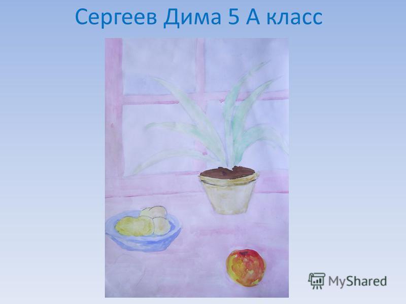 Сергеев Дима 5 А класс