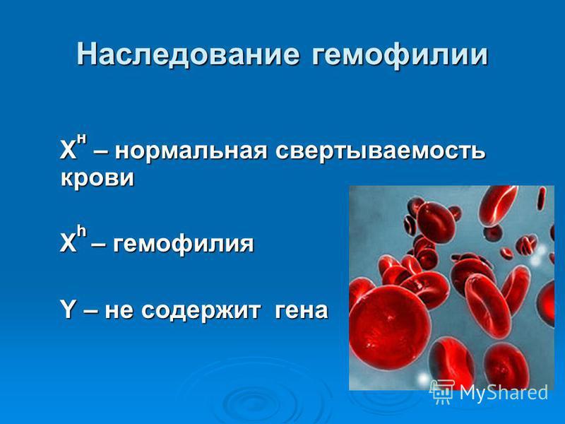 Наследование гемофилии Х н – нормальная свертываемость крови Х н – нормальная свертываемость крови Х h – гемофилия Х h – гемофилия Y – не содержит гена Y – не содержит гена