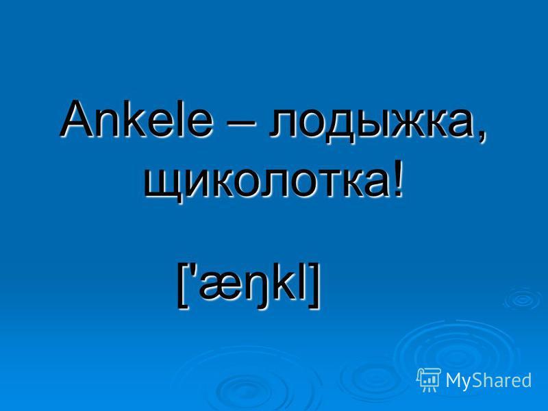 Ankele – лодыжка, щиколотка! ['æŋkl]