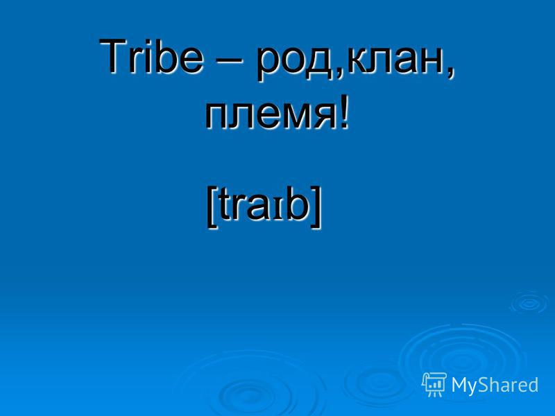 Tribe – род,клан, племя! [tra ɪ b]