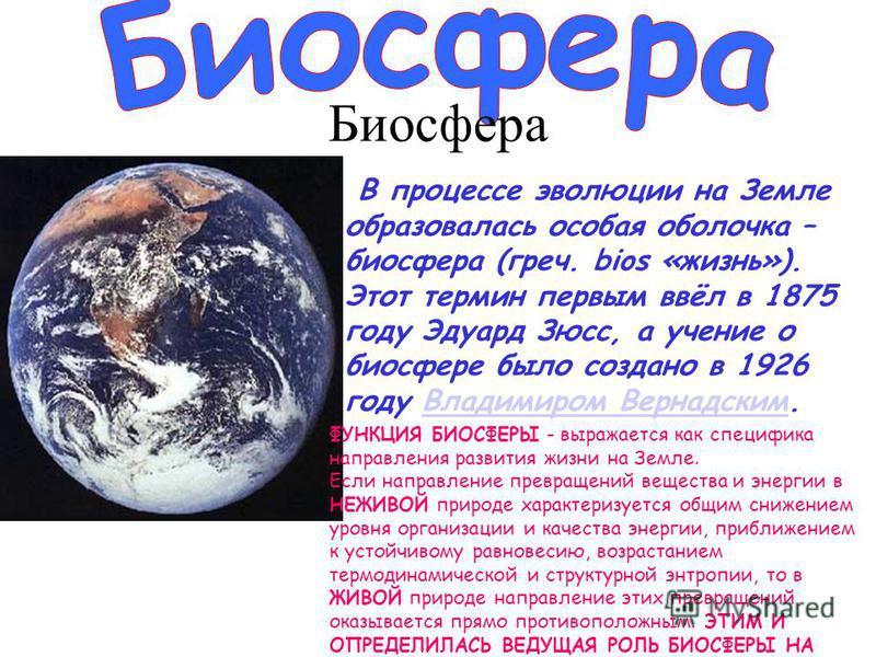 В процессе эволюции на Земле образовалась особая оболочка – биосфера (греч. bios «жизнь»). Этот термин первым ввёл в 1875 году Эдуард Зюсс, а учение о биосфере было создано в 1926 году Владимиром Вернадским.Владимиром Вернадским ФУНКЦИЯ БИОСФЕРЫ - вы
