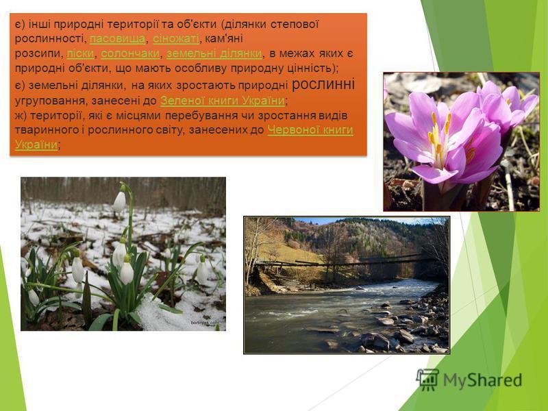 є) інші природні території та об'єкти (ділянки степової рослинності, пасовища, сіножаті, кам'яні розсипи, піски, солончаки, земельні ділянки, в межах яких є природні об'єкти, що мають особливу природну цінність); є) земельні ділянки, на яких зростают