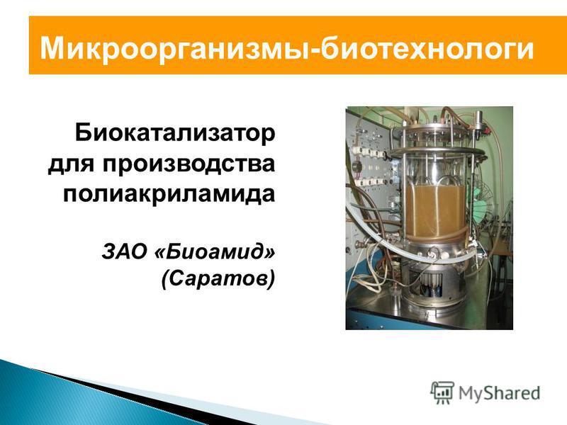 Микроорганизмы-биотехнологи Биокатализатор для производства полиакриламида ЗАО «Биоамид» (Саратов)