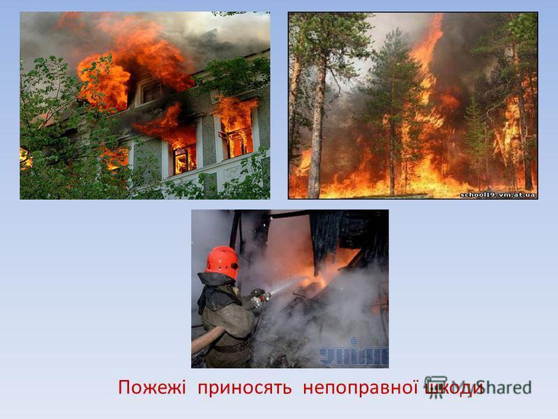 Пожежі приносять непоправної шкоди