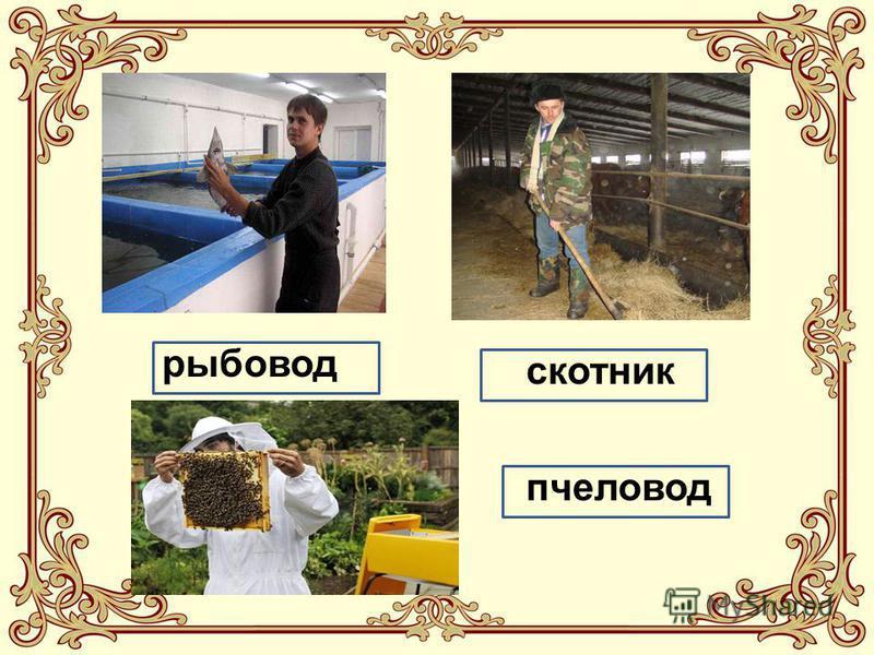 рыбовод скотник пчеловод