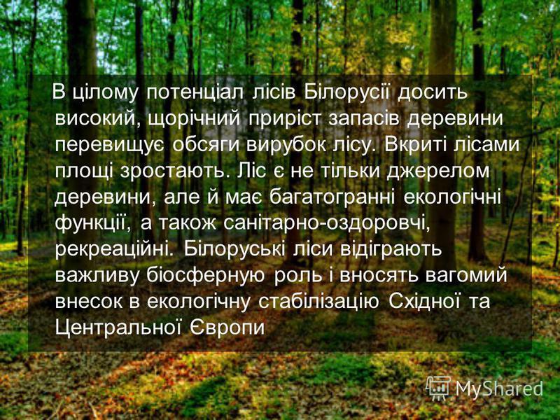 В цілому потенціал лісів Білорусії досить високий, щорічний приріст запасів деревини перевищує обсяги вирубок лісу. Вкриті лісами площі зростають. Ліс є не тільки джерелом деревини, але й має багатогранні екологічні функції, а також санітарно-оздоров