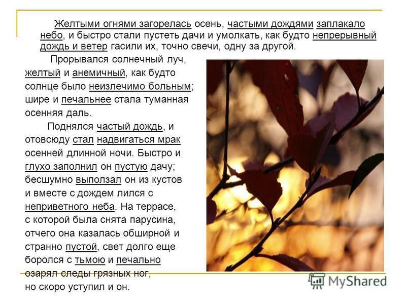 Желтыми огнями загорелась осень, частыми дождями заплакало небо, и быстро стали пустеть дачи и умолкать, как будто непрерывный дождь и ветер гасили их, точно свечи, одну за другой. Прорывался солнечный луч, желтый и анемичный, как будто солнце было н