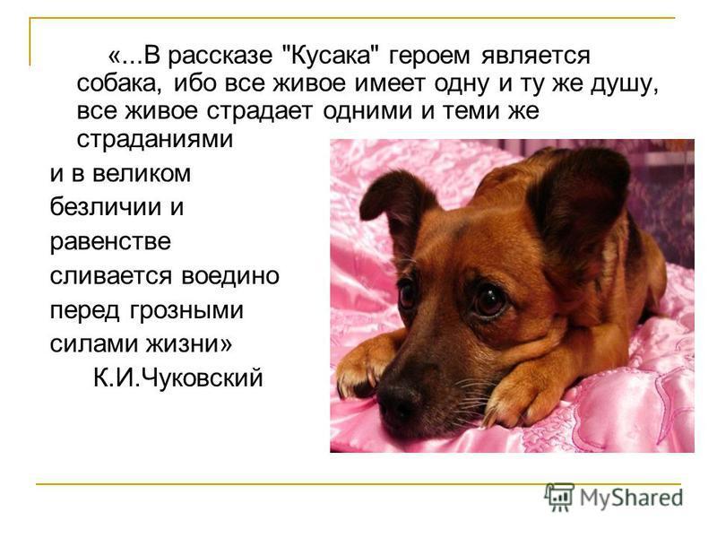 «...В рассказе Кусака героем является собака, ибо все живое имеет одну и ту же душу, все живое страдает одними и теми же страданиями и в великом безличии и равенстве сливается воедино перед грозными силами жизни» К.И.Чуковский