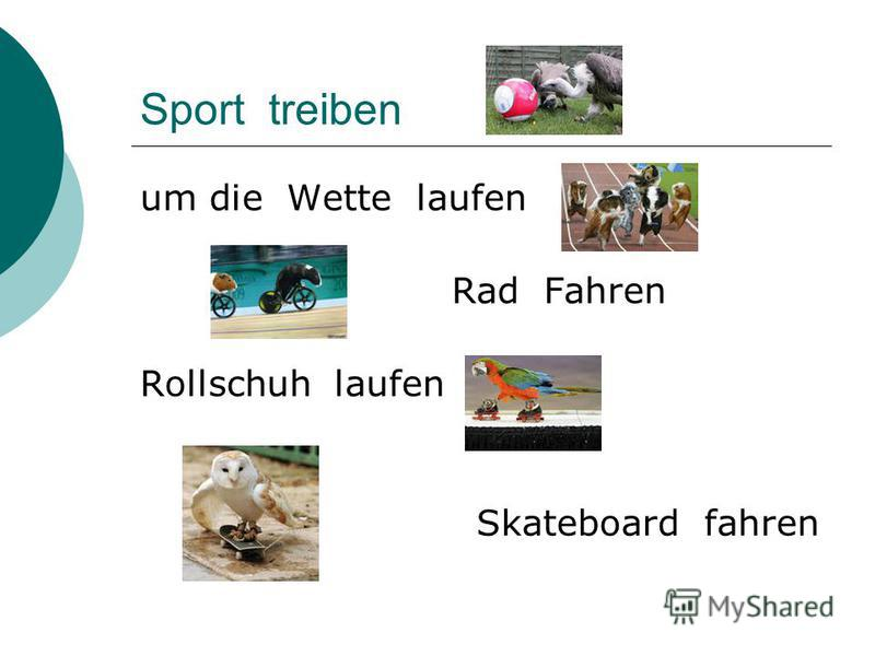 Sport treiben um die Wette laufen Rad Fahren Rollschuh laufen Skateboard fahren