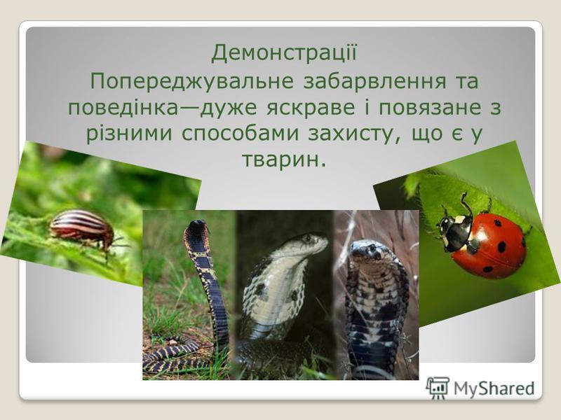 Демонстрації Попереджувальне забарвлення та поведінкадуже яскраве і повязане з різними способами захисту, що є у тварин.