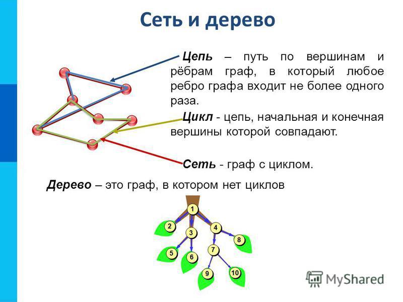 Сеть и дерево Цепь – путь по вершинам и рёбрам граф, в который любое ребро графа входит не более одного раза. Дерево – это граф, в котором нет циклов Цикл - цепь, начальная и конечная вершины которой совпадают. Сеть - граф с циклом.