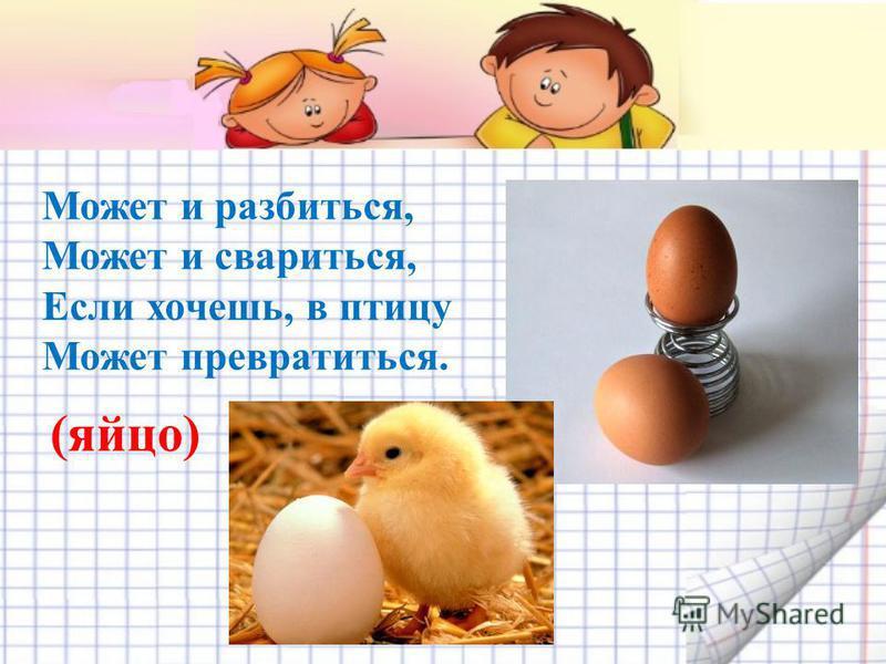 Может и разбиться, Может и свариться, Если хочешь, в птицу Может превратиться. (яйцо)