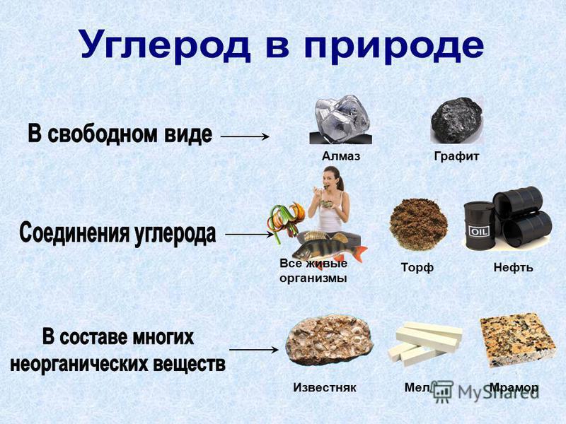 Алмаз Графит Торф Нефть Известняк МелМрамор Все живые организмы