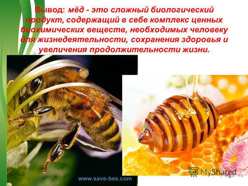 Free Powerpoint TemplatesPage 19 Вывод: мёд - это сложный биологический продукт, содержащий в себе комплекс ценных биохимических веществ, необходимых человеку для жизнедеятельности, сохранения здоровья и увеличения продолжительности жизни.