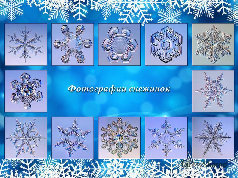 Фотографии снежинок