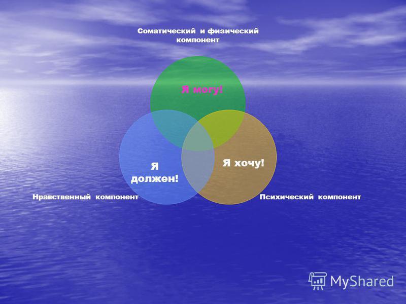 Соматический и физический компонент Психический компонент Нравственный компонент Я могу! Я хочу! Я должен!