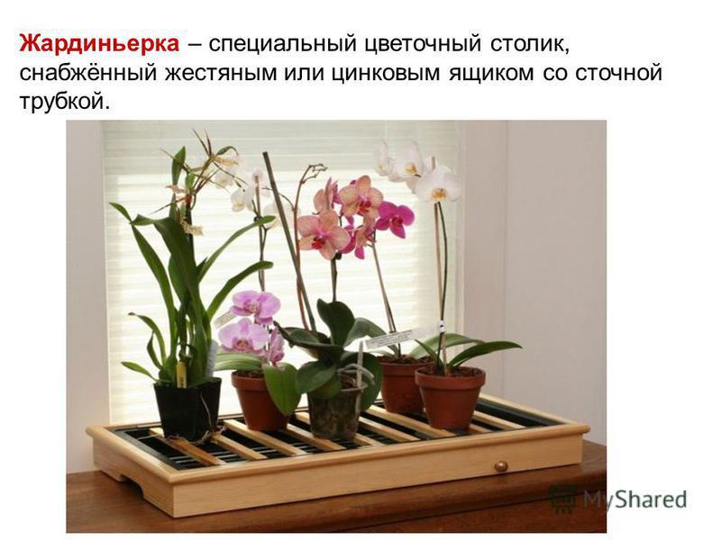 Жардиньерка – специальный цветочный столик, снабжённый жестяным или цинковым ящиком со сточной трубкой.