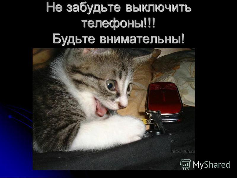 Не забудьте выключить телефоны!!! Будьте внимательны!
