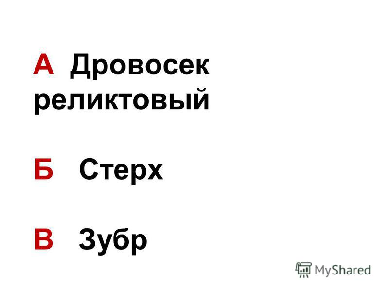 А Дровосек реликтовый Б Стерх В Зубр