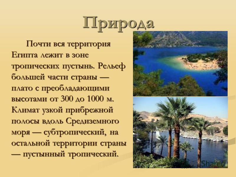 Природа Почти вся территория Египта лежит в зоне тропических пустынь. Рельеф большей части страны плато с преобладающими высотами от 300 до 1000 м. Климат узкой прибрежной полосы вдоль Средиземного моря субтропический, на остальной территории страны