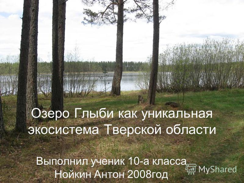 Озеро Глыби как уникальная экосистема Тверской области Выполнил ученик 10-а класса Нойкин Антон 2008 год