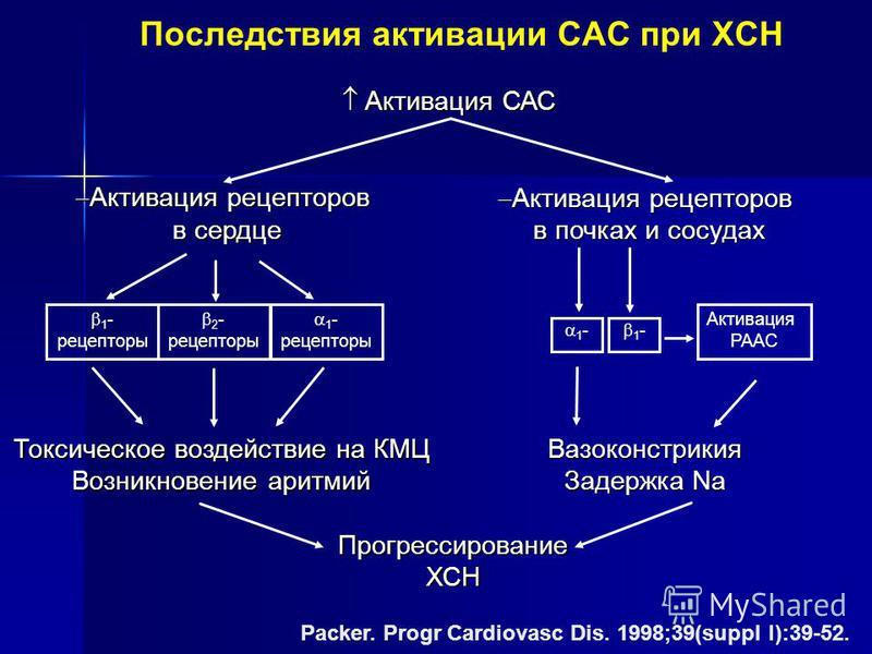 Packer. Progr Cardiovasc Dis. 1998;39(suppl I):39-52. Активация САС Активация САС ПрогрессированиеХСН Активация рецепторов Активация рецепторов в сердце 1 - рецепторы 2 - рецепторы 1 - рецепторы Вазоконстрикия Задержка Na Токсическое воздействие на К