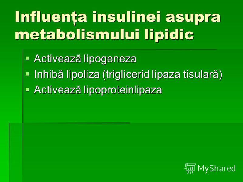 Influenţa insulinei asupra metabolismului lipidic Activează lipogeneza Activează lipogeneza Inhibă lipoliza (triglicerid lipaza tisulară) Inhibă lipoliza (triglicerid lipaza tisulară) Activează lipoproteinlipaza Activează lipoproteinlipaza