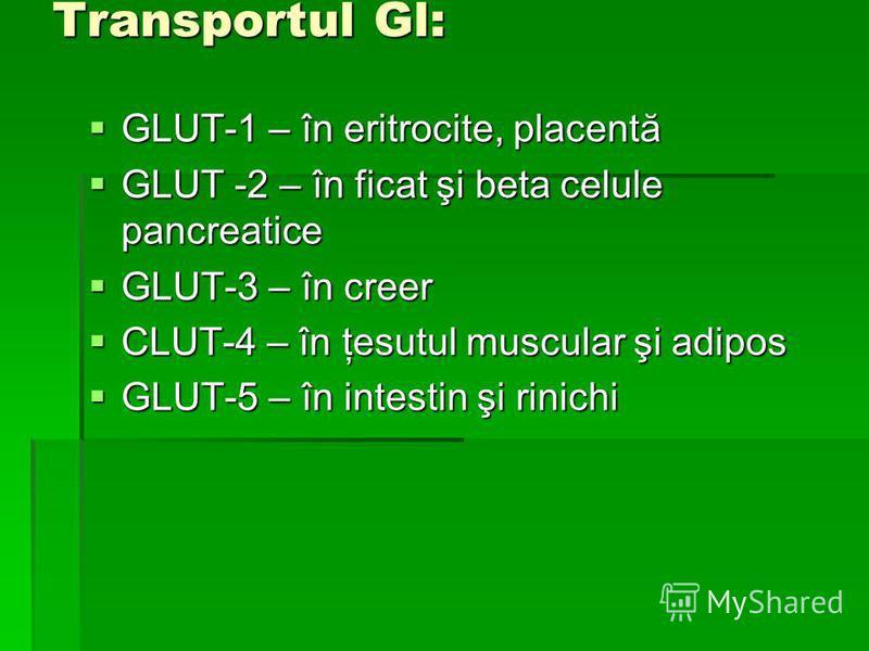 Transportul Gl: GLUT-1 – în eritrocite, placentă GLUT-1 – în eritrocite, placentă GLUT -2 – în ficat şi beta celule pancreatice GLUT -2 – în ficat şi beta celule pancreatice GLUT-3 – în creer GLUT-3 – în creer CLUT-4 – în ţesutul muscular şi adipos C