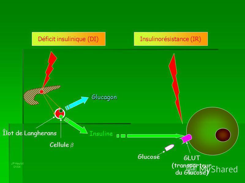 JP Haulot 01/04 Glucagon Insuline Cellule Glucose GLUT (transporteur du Glucose) Déficit insulinique (DI)Insulinorésistance (IR) Îlot de Langherans Glucagon