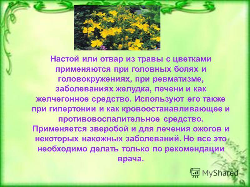 Настой или отвар из травы с цветками применяются при головных болях и головокружениях, при ревматизме, заболеваниях желудка, печени и как желчегонное средство. Используют его также при гипертонии и как кровоостанавливающее и противовоспалительное сре