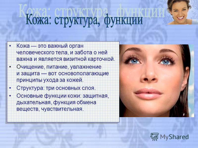Кожа это важный орган человеческого тела, и забота о ней важна и является визитной карточкой. Очищение, питание, увлажнение и защита вот основополагающие принципы ухода за кожей. Структура: три основных слоя. Основные функции кожи: защитная, дыхатель